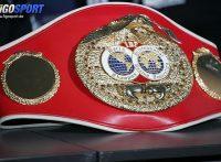 この画像は、サイトの記事「ボクシング 八重樫東 ネットや口コミで話題 YouTube注目無料視聴動画ご紹介!」のイメージ写真画像として利用しています。